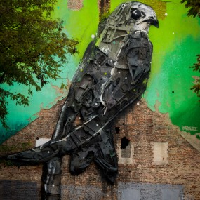 bordalo-apus-apus